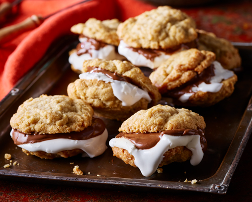 Spiced Cookie S'mores